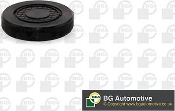 BGA PL4602 - Заглушка, вісь коромисла-монтажний отвір autozip.com.ua