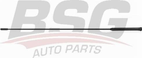 BSG BSG30922073 - Антена autozip.com.ua