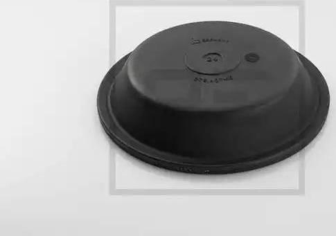 PE Automotive 076.407-10A - Мембрана, циліндр пружинного енерго-акумулятора autozip.com.ua